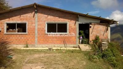 Casa en Venta en Coroico Coroico Comunidad Yalaca, sobre camino a Carmen Pampa