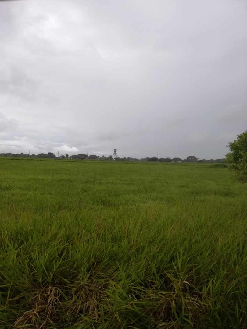 Terreno en Venta Zona norte Foto 2