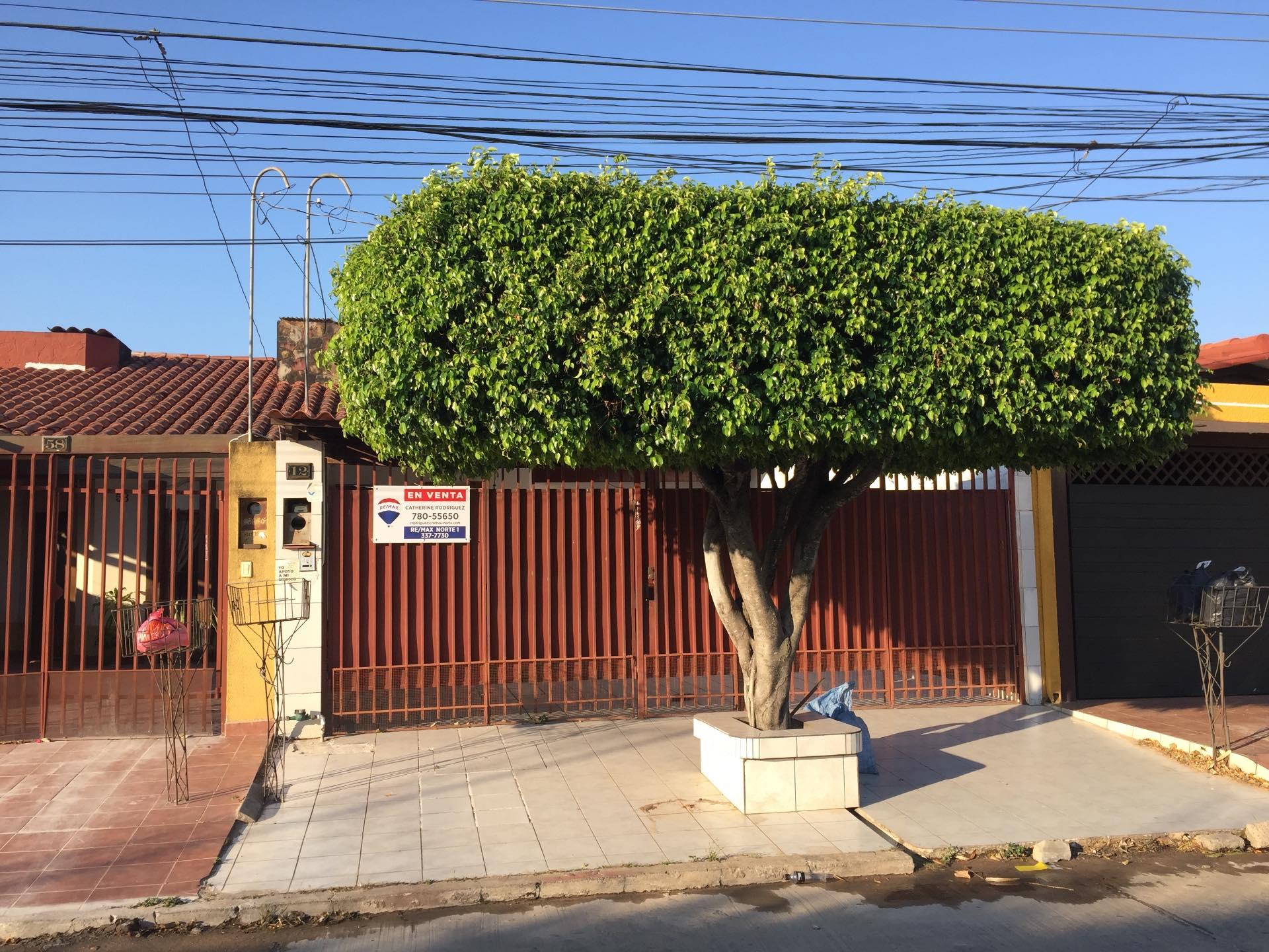 Calle 2 remberto prado no 12 us 95 000 uc 435209 for Calle prado jerez 3 navacerrada