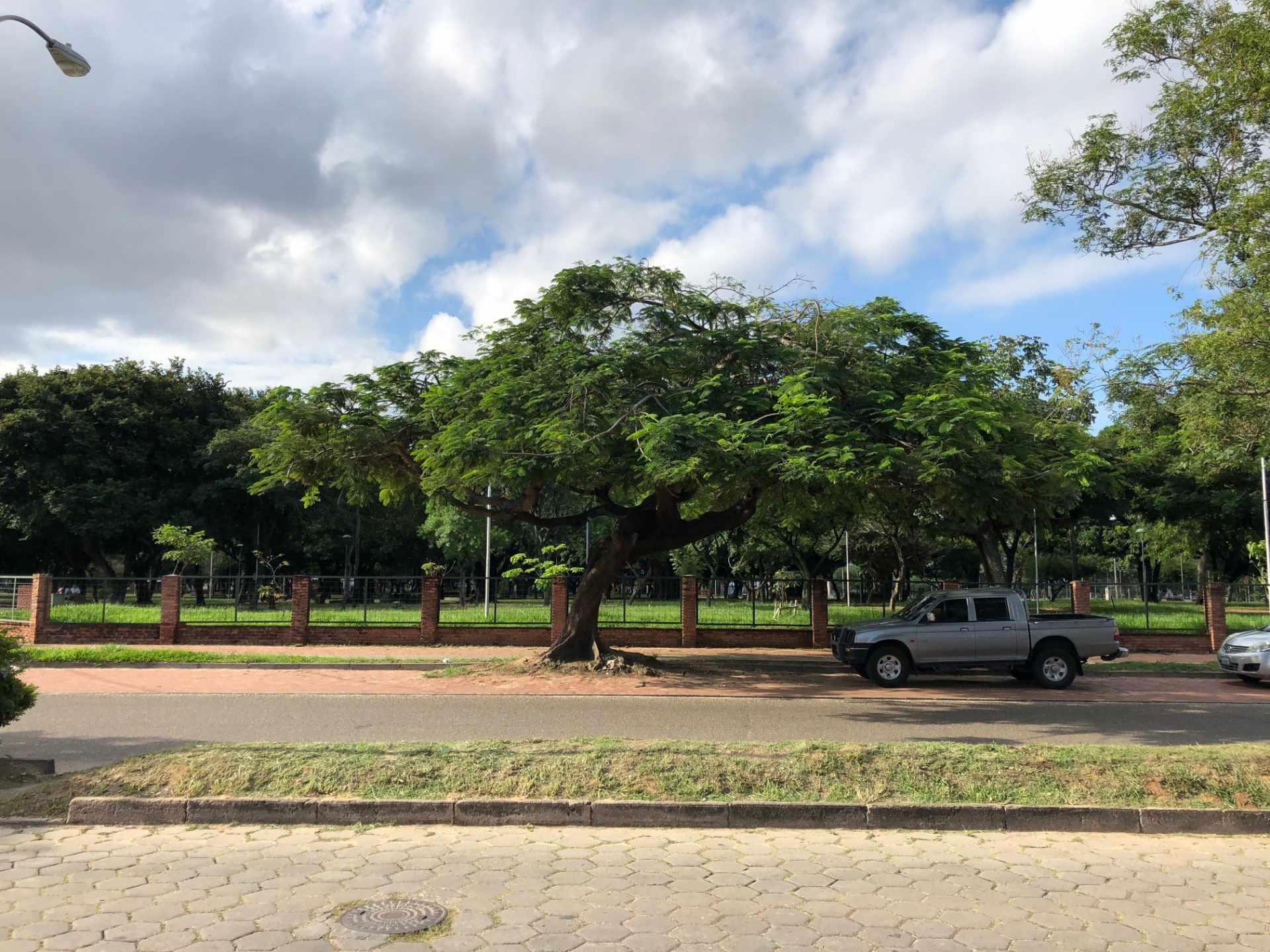 Terreno en Venta Avenida Teniente Cuellar frente al Parque Urbano Foto 3