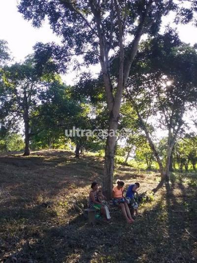 Terreno en Venta en Trinidad Trinidad A 104 KM. ENTRE BENI - SANTA CRUZ